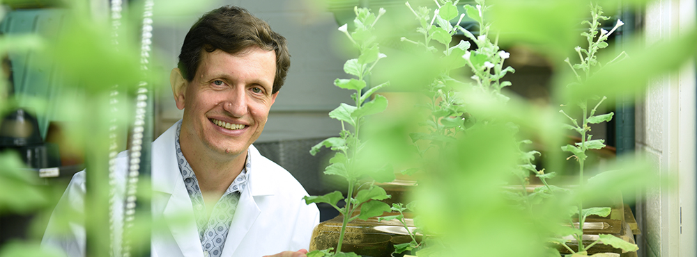 Heyl - Plant DNA and Climate Change